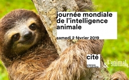 Journée mondiale de l'intelligence animale à la Cité des Sciences et de l'Industrie 2/02