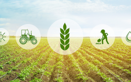 L'agriculture for Good, for sure